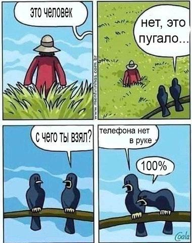 https://cs11.pikabu.ru/post_img/2019/07/09/6/156266070914820784.jpg