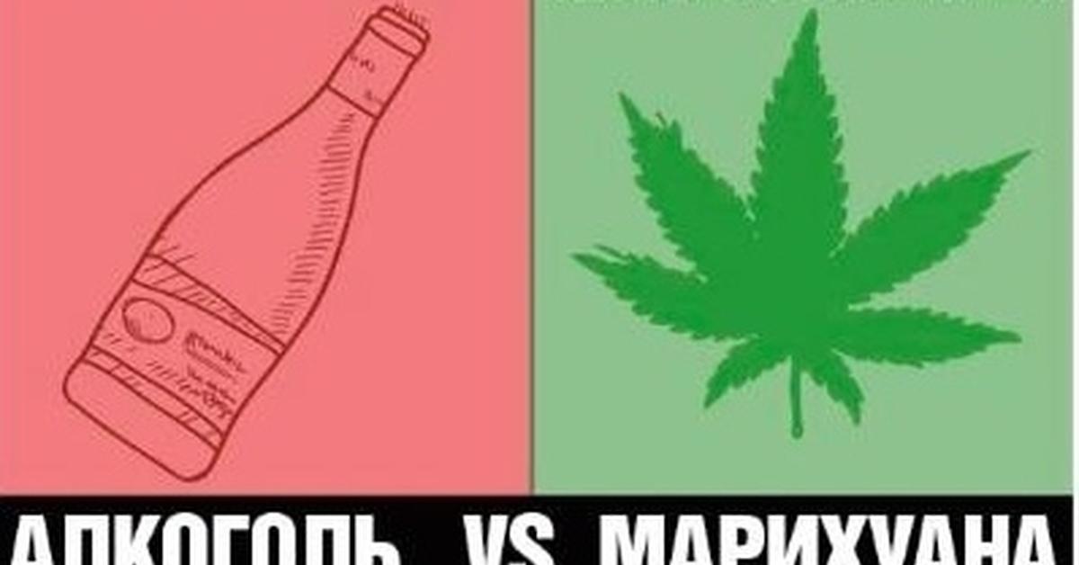 Постоянно водка и марихуана влияние марихуаны на кровь