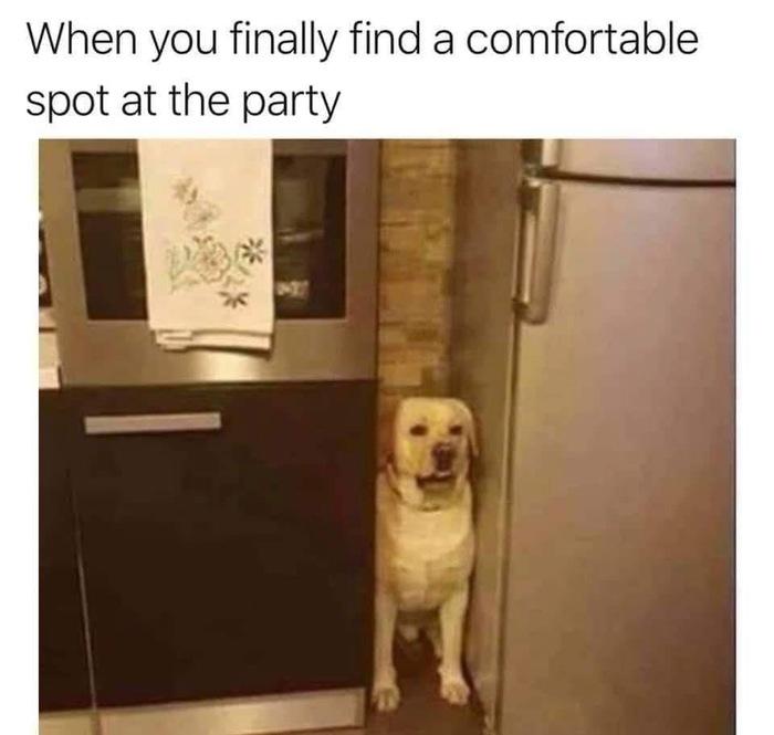 Когда нашел комфортное место на вечеринке...