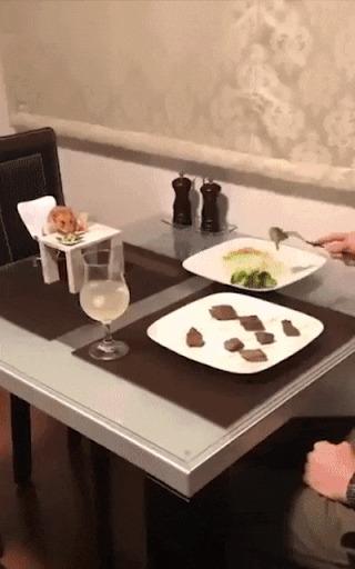 Завтрак с другом.