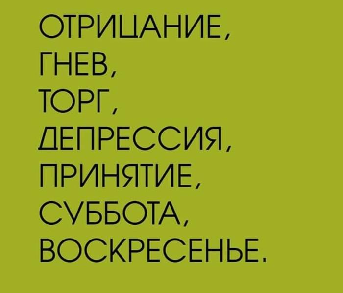 1568209240181232798.jpg