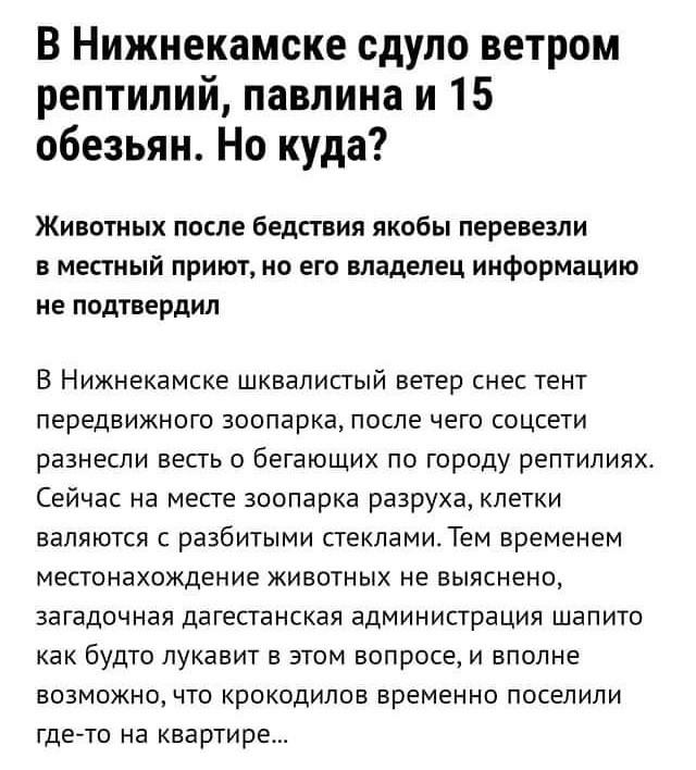 привед, блудный, красивые русские толстушки секс мне кажется