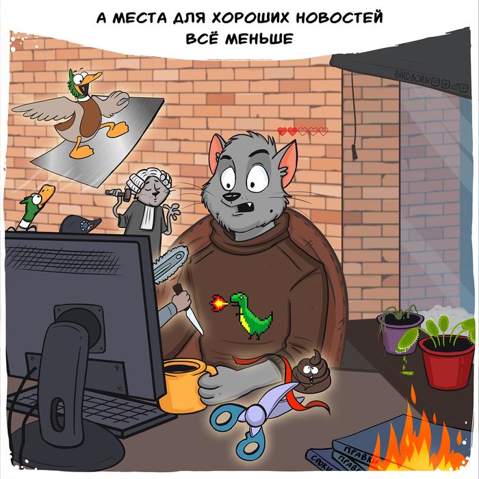 Про будни Bird Born, Кот, Комиксы, Юмор, Кот Степан, Длиннопост