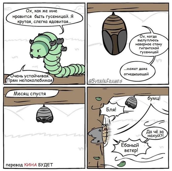 Хорошо быть гусеничкой... Гусеница, Бабочка, Мечта, Sveninframes, Комиксы, Перевел сам