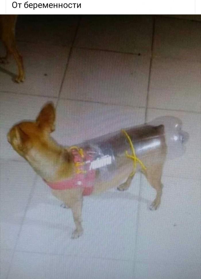 Противозачаточная бутылка