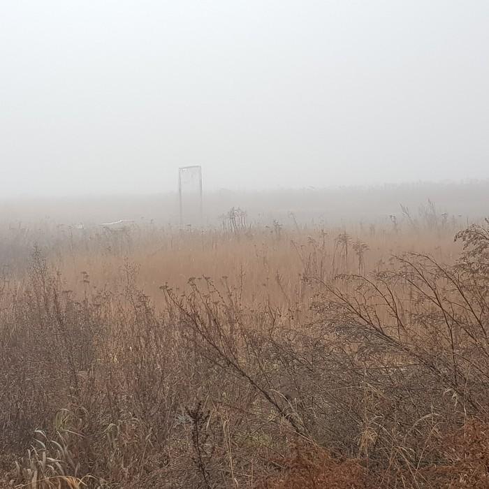 Ни ежика, ни лошадки Туман, Ноябрь, Последний день, Длиннопост