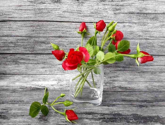 Кустовая роза из холодного фарфора Холодный фарфор, Рукоделие без процесса, Цветы, Красные розы, Полимерная глина, Ручная работа, Длиннопост