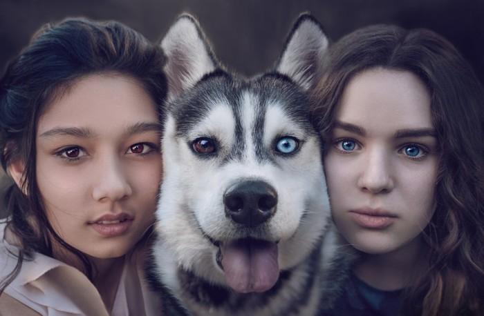 Контраст в глазах Фотография, Собака, Девушки