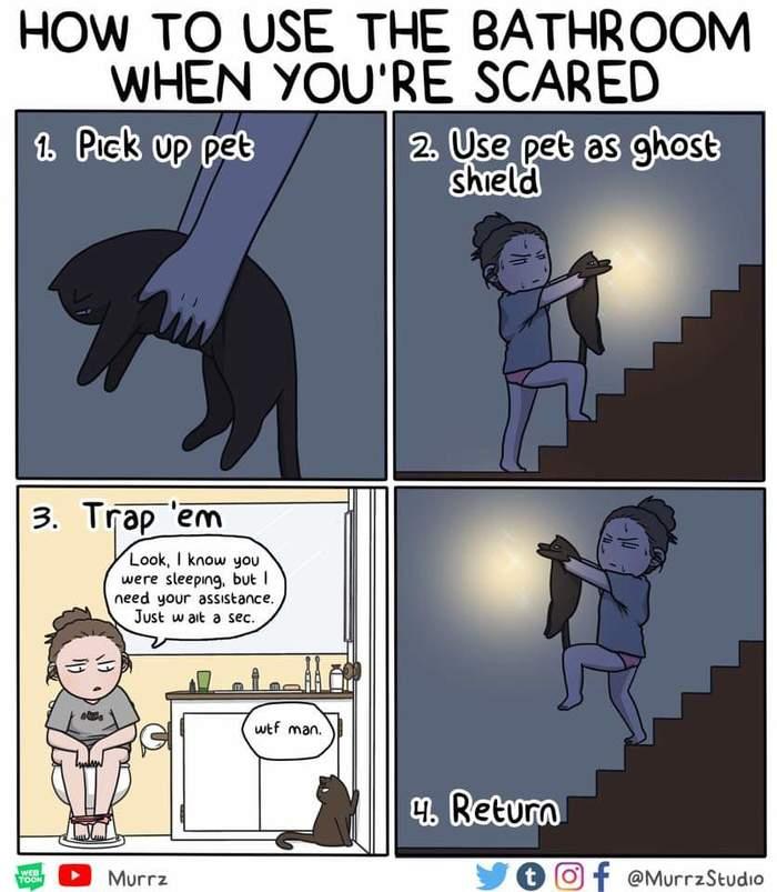 Как пользоваться туалетом, когда страшно Кот, Комиксы