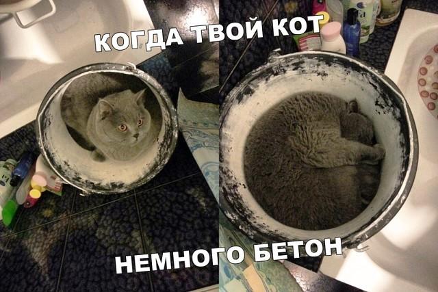 Бетономурчалка