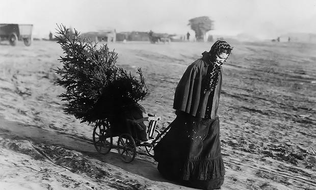 Хочу все знать 562.Рождественские фотографии 18951930 год