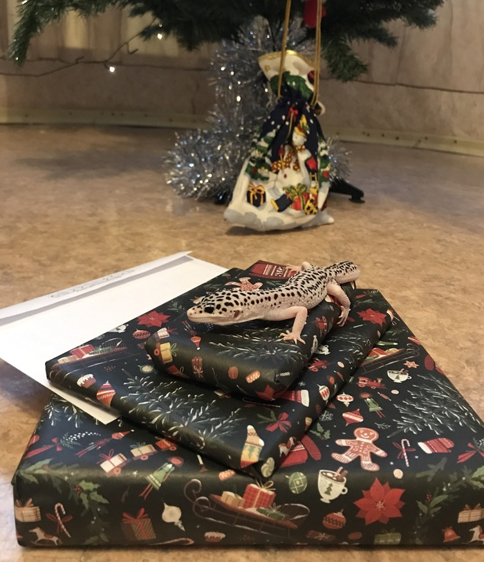 АДМ 2018/2019 (да, я не ошиблась) Москва-Москва Тайный Санта, Обмен подарками, Новогодний обмен подарками, Отчет по обмену подарками, Длиннопост