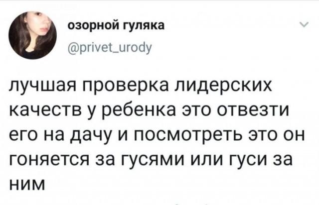 Лучшая проверка)