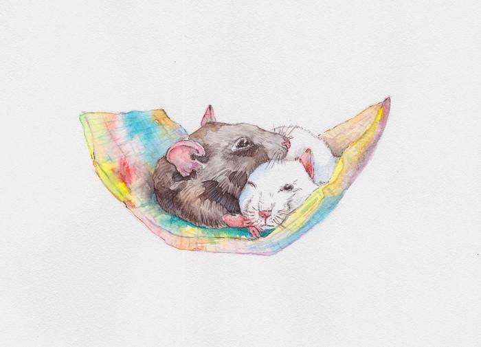 Каляки-маляки Акварель, Крыса, Французский бульдог, Собака, Рисунок, Длиннопост, Животные, Анималистика, Цветы