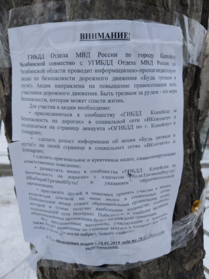 ГИБДД Отдела МВД России по городу Копейску клеит незаконную рекламу на деревьях призывая подписаться на их группу в VK и Instagram