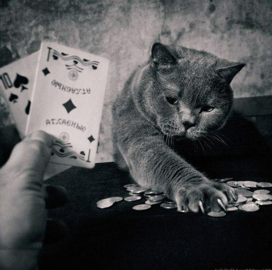 Игра закончилась! Банк мой!