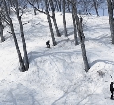 Отличный трюк! Горные лыжи, Прыжок, Горы, Трюк, Гифка, Fail