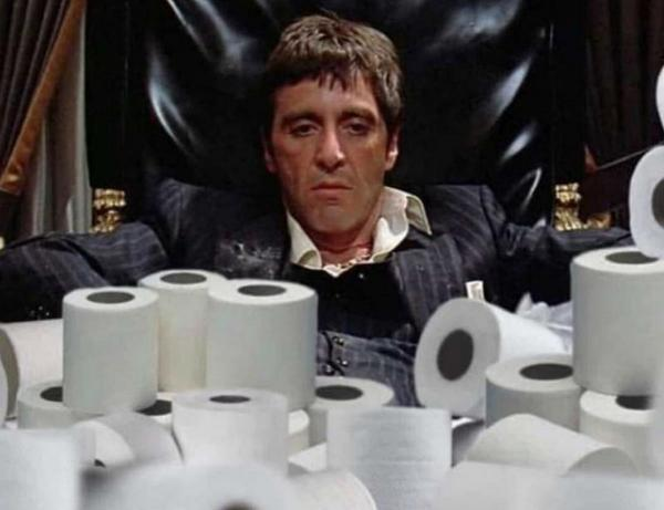 Туалетная бумага, а что было до? Туалетная бумага, История, Длиннопост, Гигиена