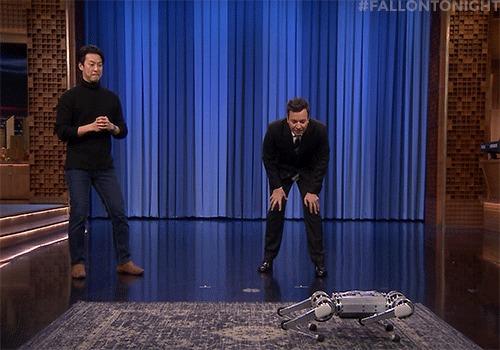 Mini-Cheetah: робот-гепард Робот, Бостон, Коронавирус, Дезинфекция, Массачусетс, Гифка, Видео