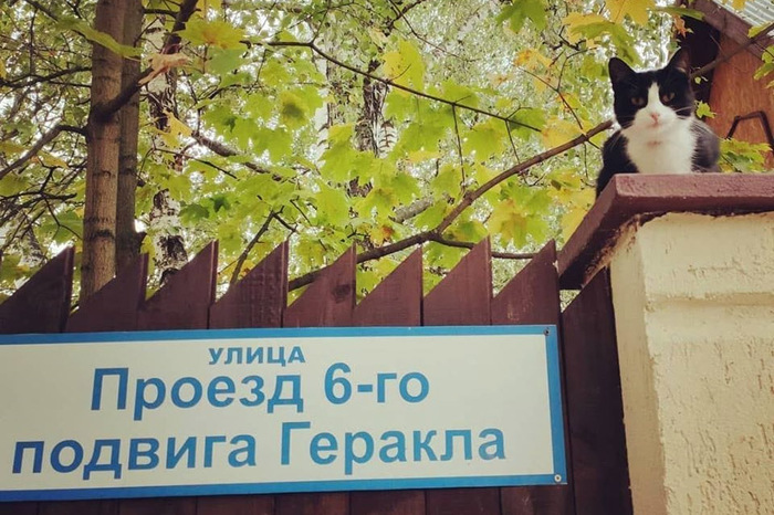 https://cs11.pikabu.ru/post_img/2020/04/25/7/1587814341173663031.jpg