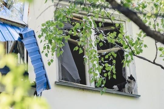 Чудесное спасение кота из жилого дома на Волгоградской попало на фото