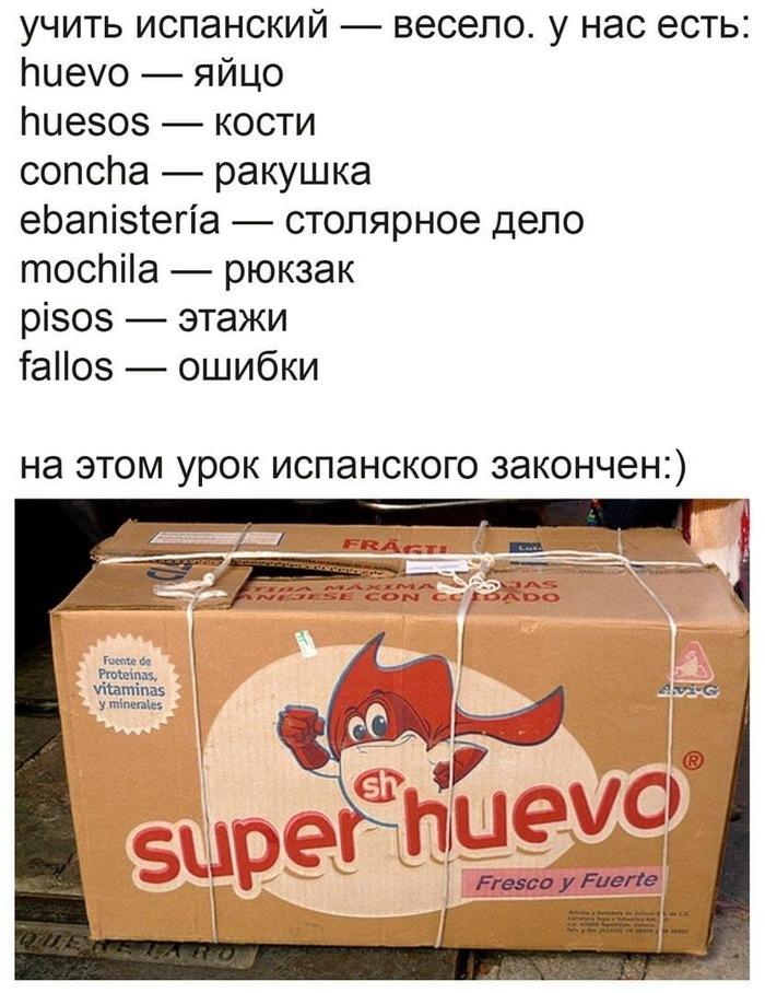 https://cs11.pikabu.ru/post_img/2020/05/26/6/1590482934193851097.jpg