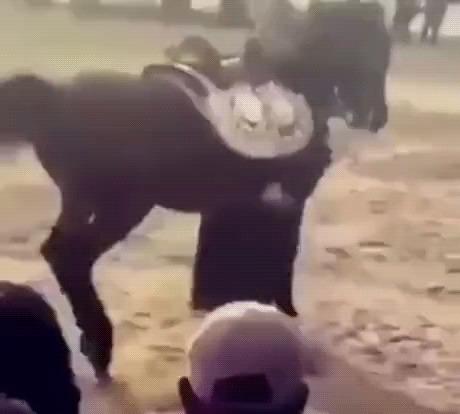 Танцуй! Сам танцуй!