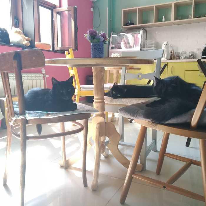 Собрание чернушек