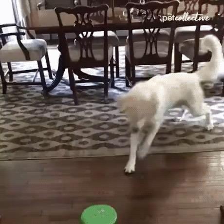 Потерял игрушку