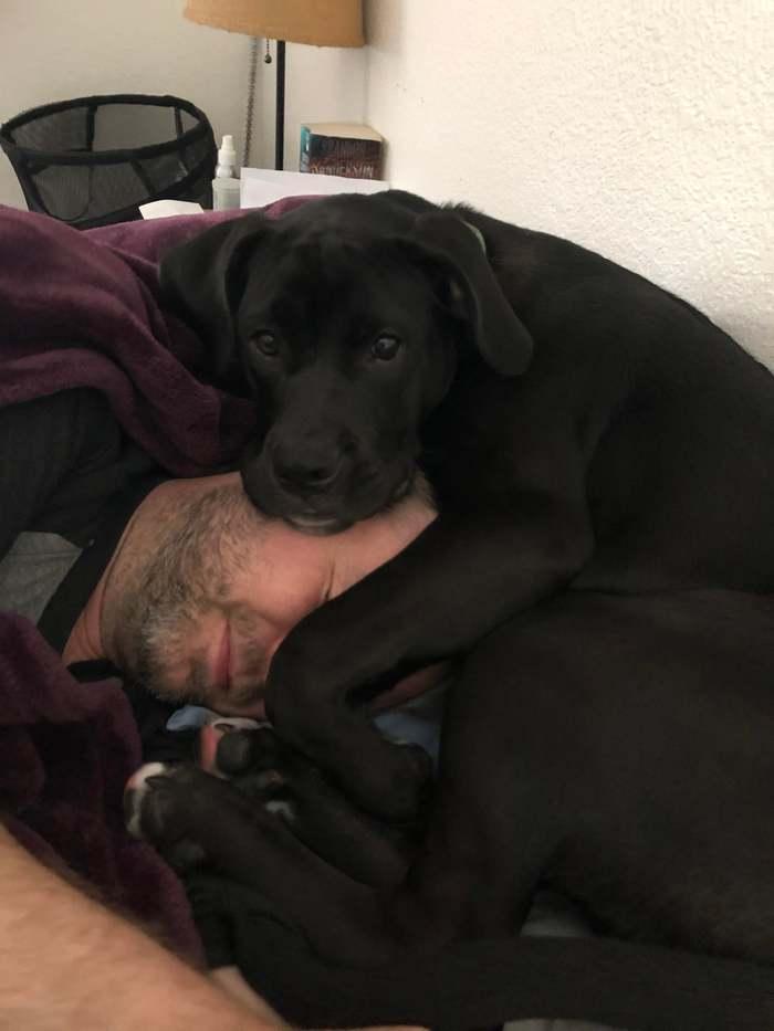 Он выбрал себе самое удобное место для сна