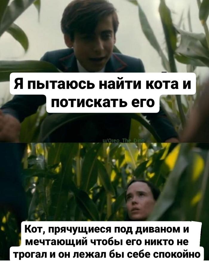 https://cs11.pikabu.ru/post_img/2020/09/01/4/1598933790161549939.jpg