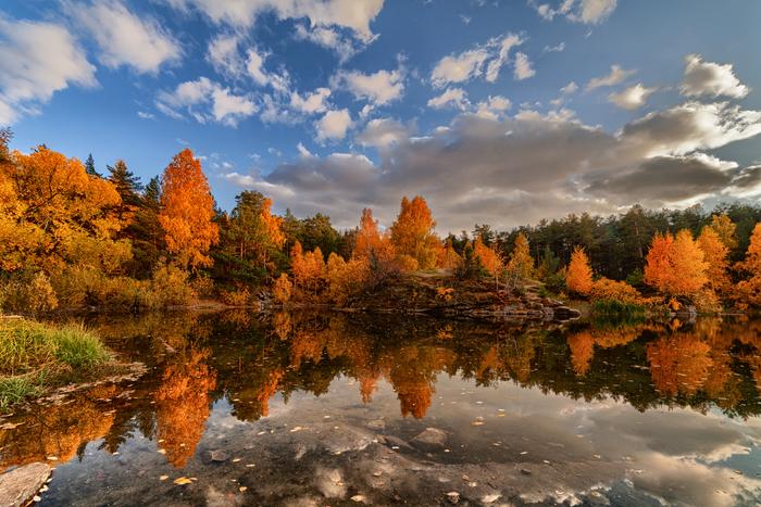 Осень в Шершнёвском бору
