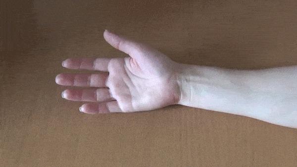 Немного об анатомии Анатомия, Интересное, Мышцы, Рука, Рудимент, Интересно узнать, Гифка, Видео