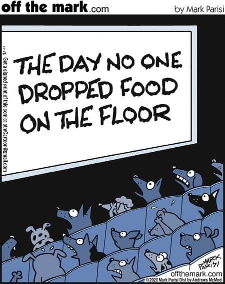 Ужастики для собак: День, когда никто не уронил еду на пол