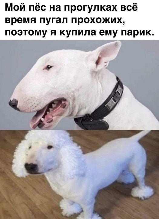 Гениально)))