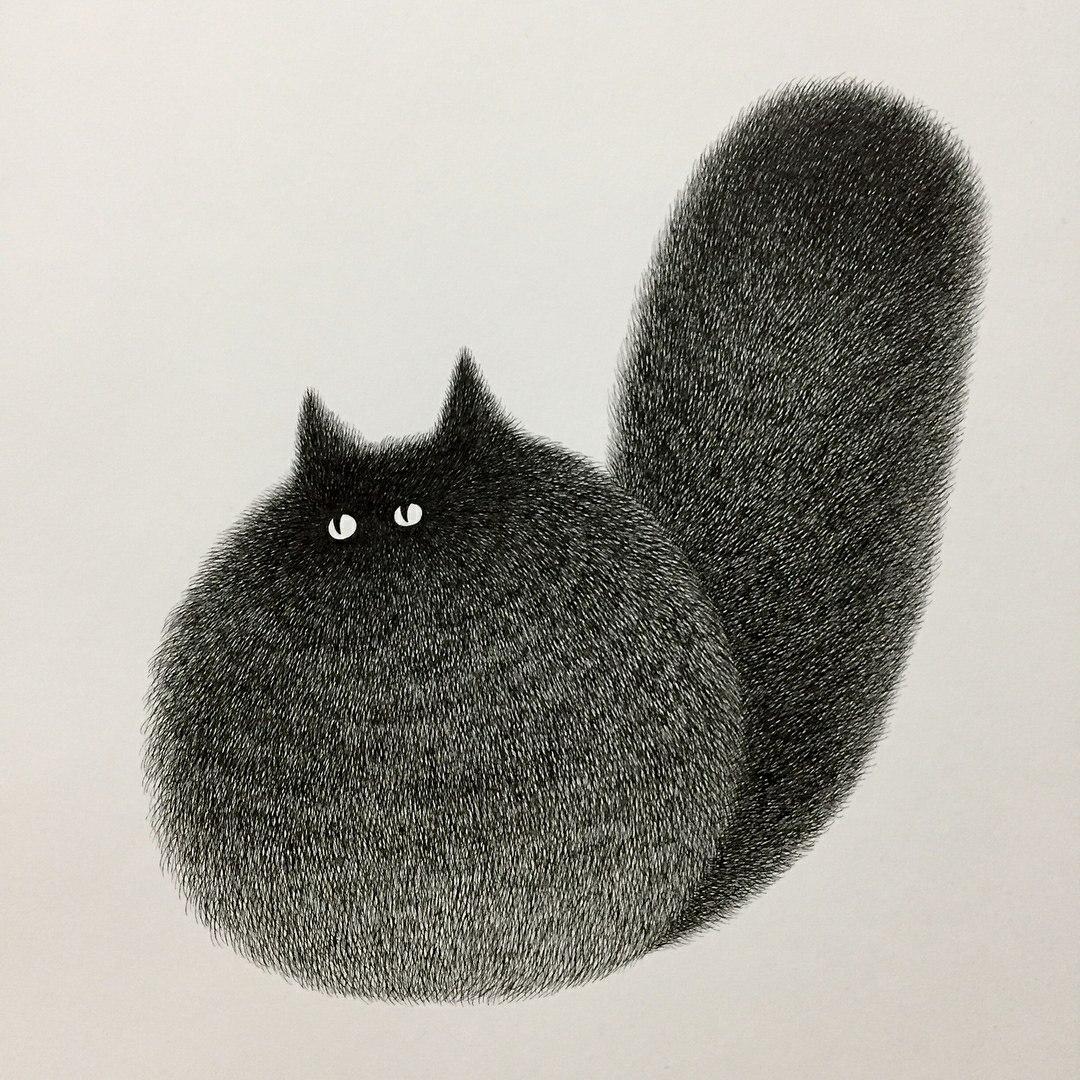 фото рисунки кошек