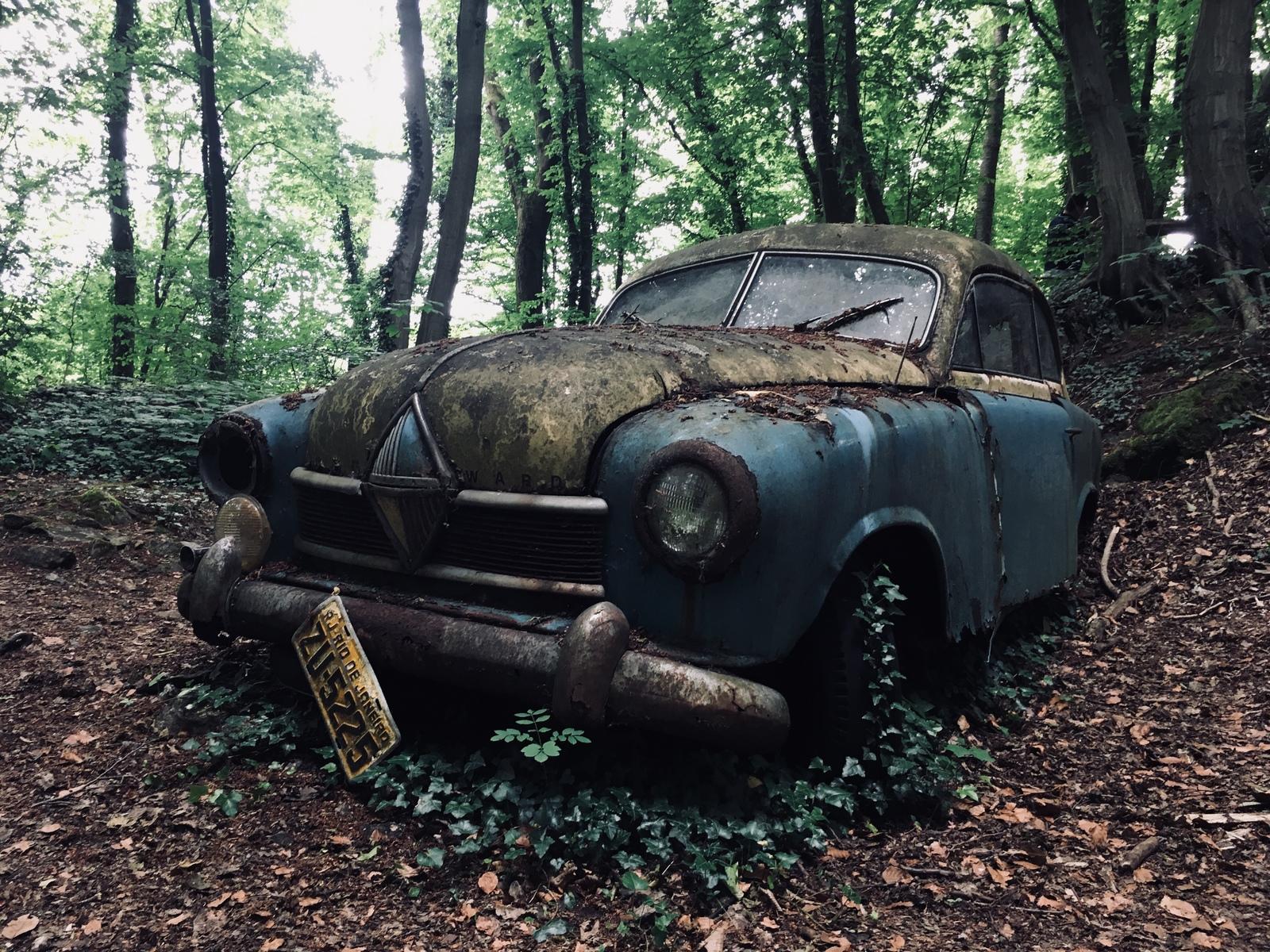 Обои автомобил, лес, брошенный, ржавчина, старый. Разное foto 10