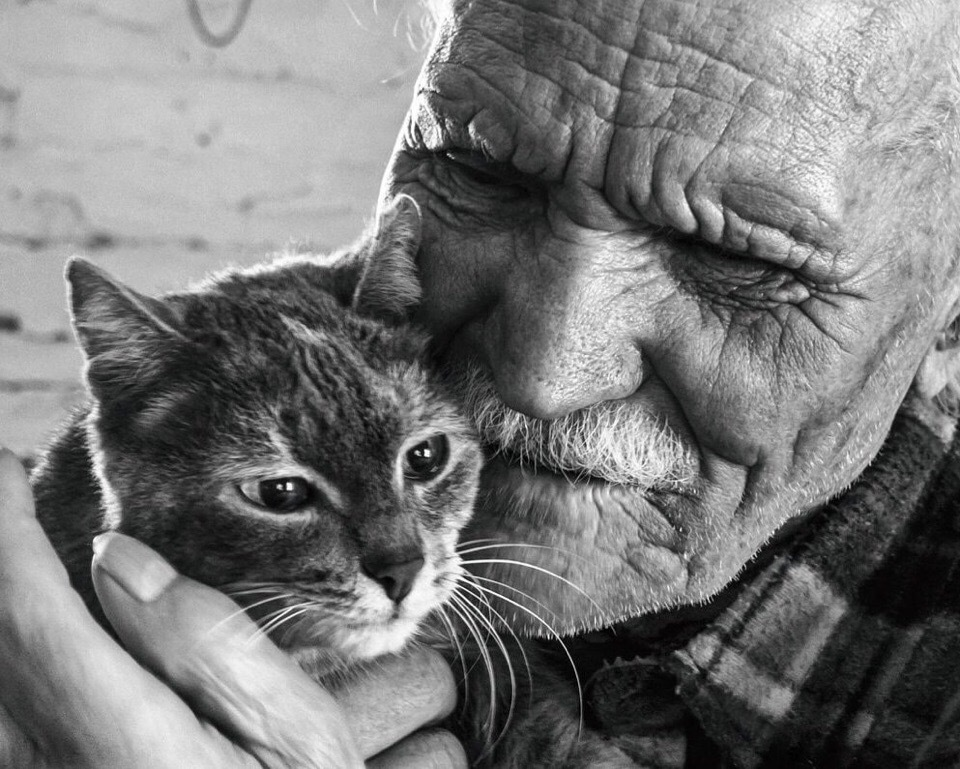 Дед и кот | Пикабу