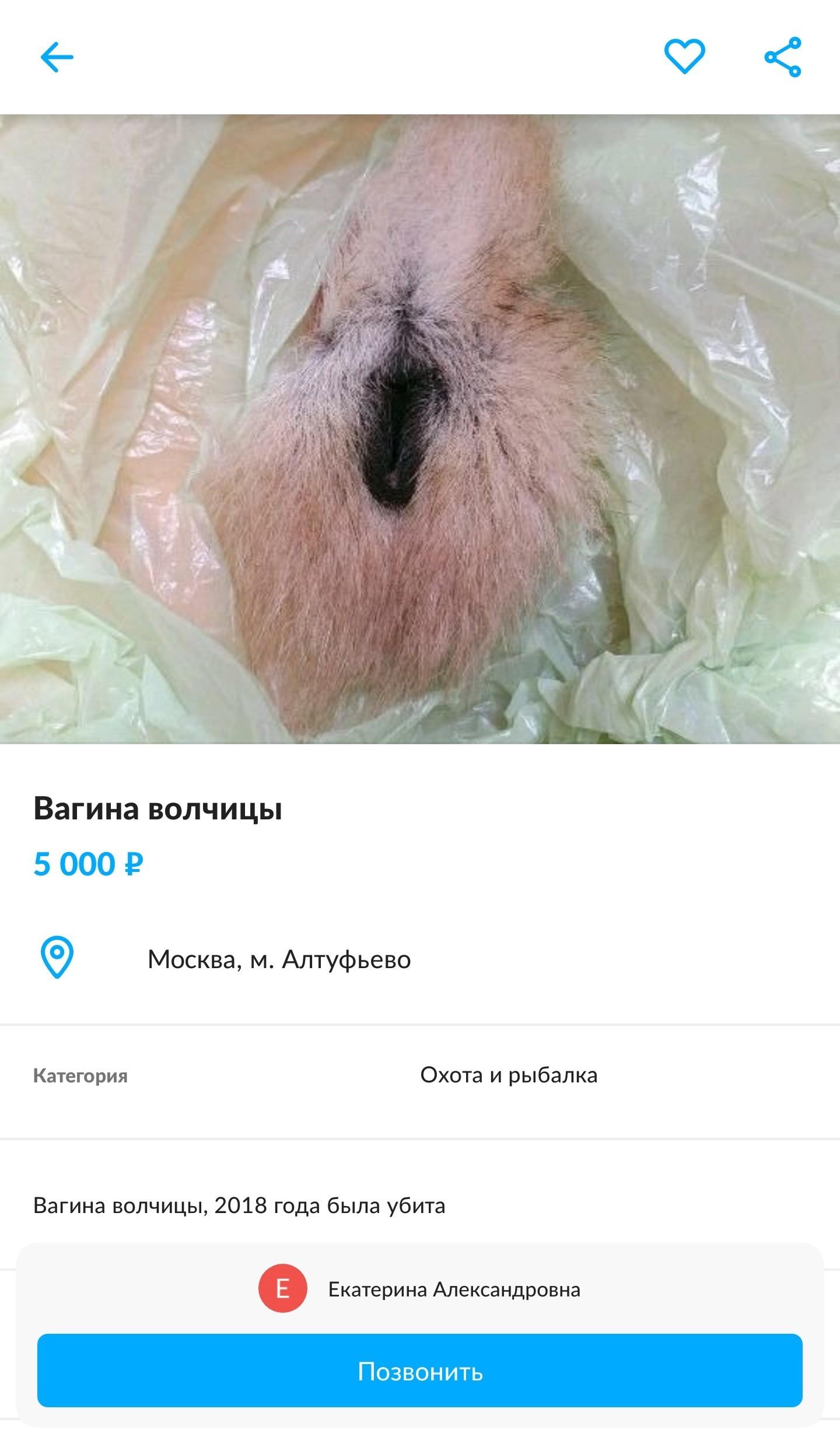 foto-gde-vagina-chastnoe-foto-goloy-tolstushki-zheni