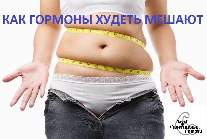 диеты для похудения отзывы и результаты олимпиады