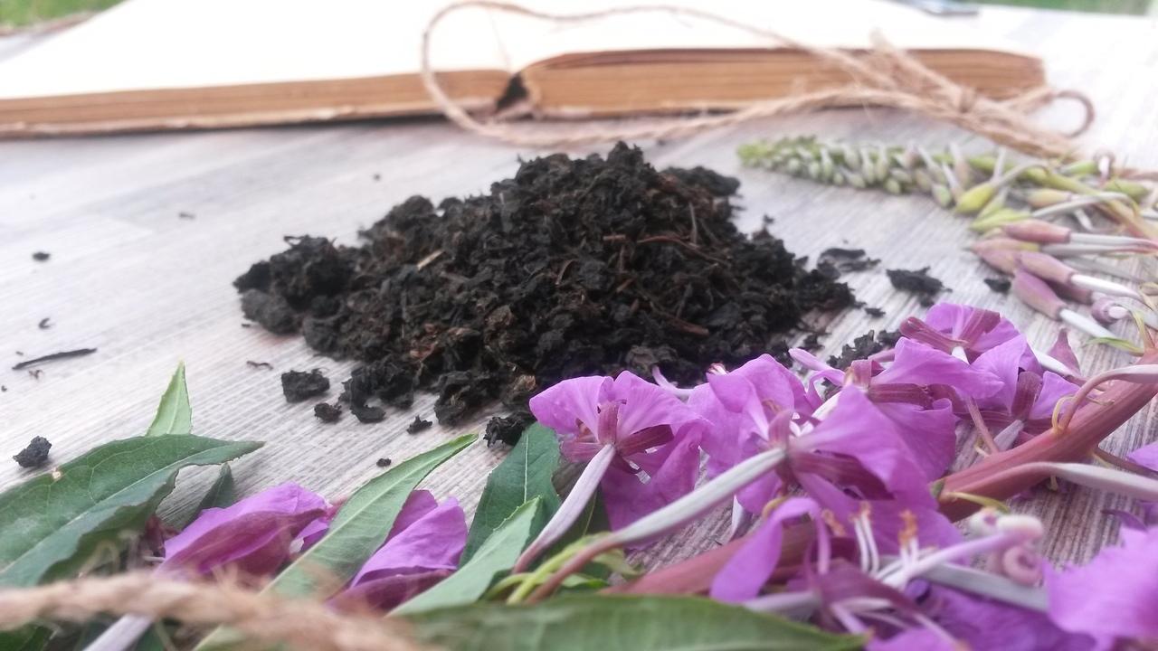 Как сделать копорский/иван-чай своими руками