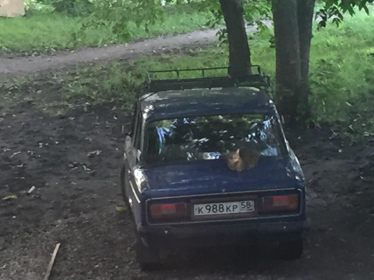 Угнали автомобиль в залоге отзывы автосалон автопарк москва