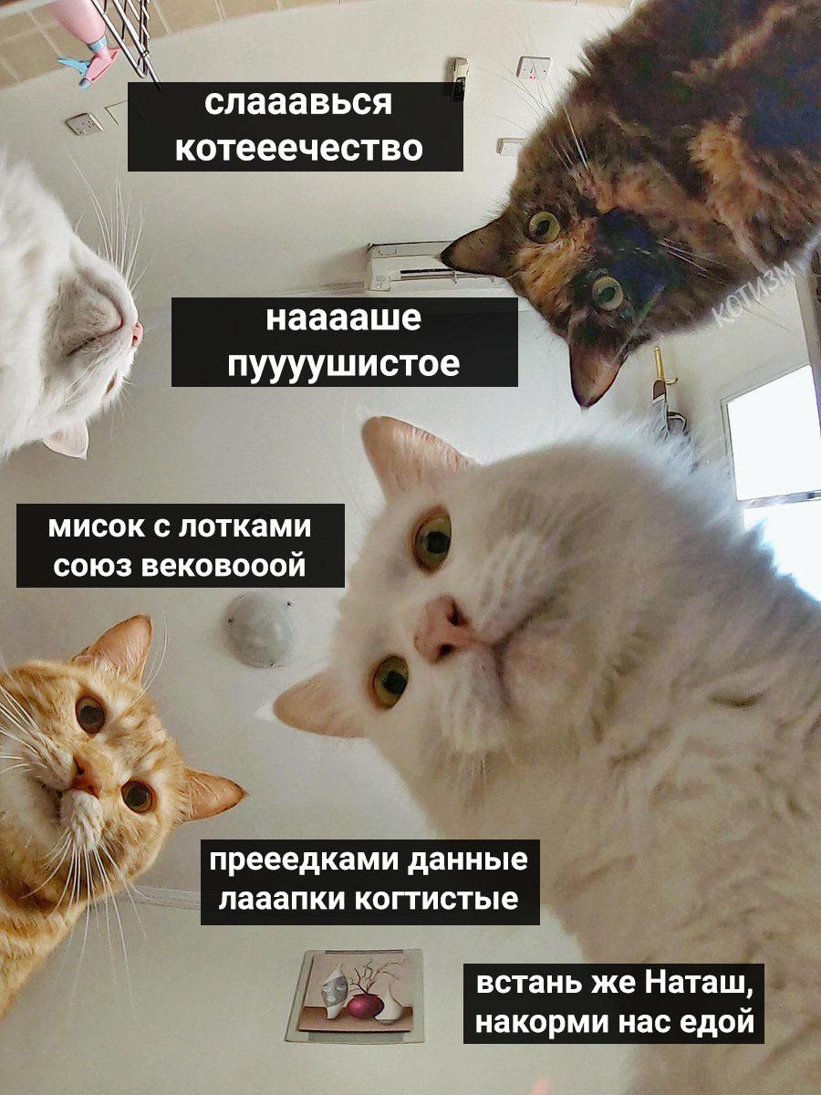 1589829149162957759.jpg